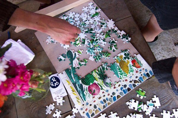 Puzzle kvetinový vzor Pucle Kristína Kemeníková kaktusy rastliny