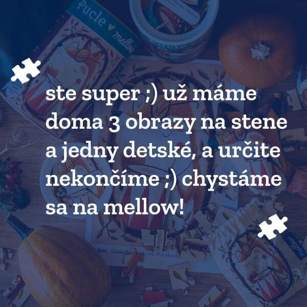 Zakaznicka Barbora review Pucle puzzle